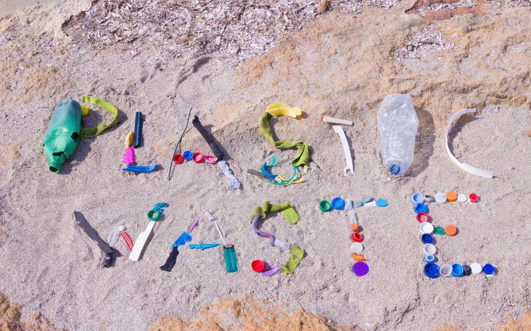 Mikroplastik schädigt nachhaltig